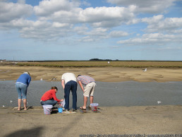holiday rental for families near Crabbing sessions | sextons place