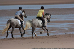 horse riding on holiday English staycation | sextons place