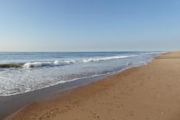 Holme beach Unique self catering properties by the coast | Sextons Place